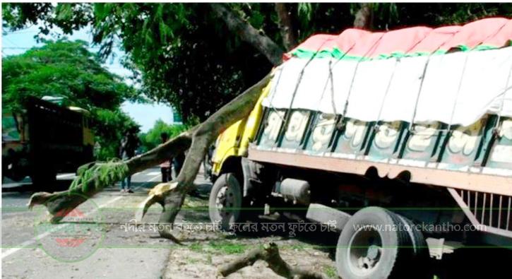 নাটোরে ট্রাক নিয়ন্ত্রন হারিয়ে গাছে ধাক্কা : নিহত ১ আহত ২ জন